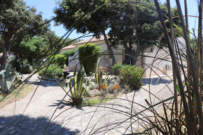 Relaxez-vous dans notre jardin mediterranéen